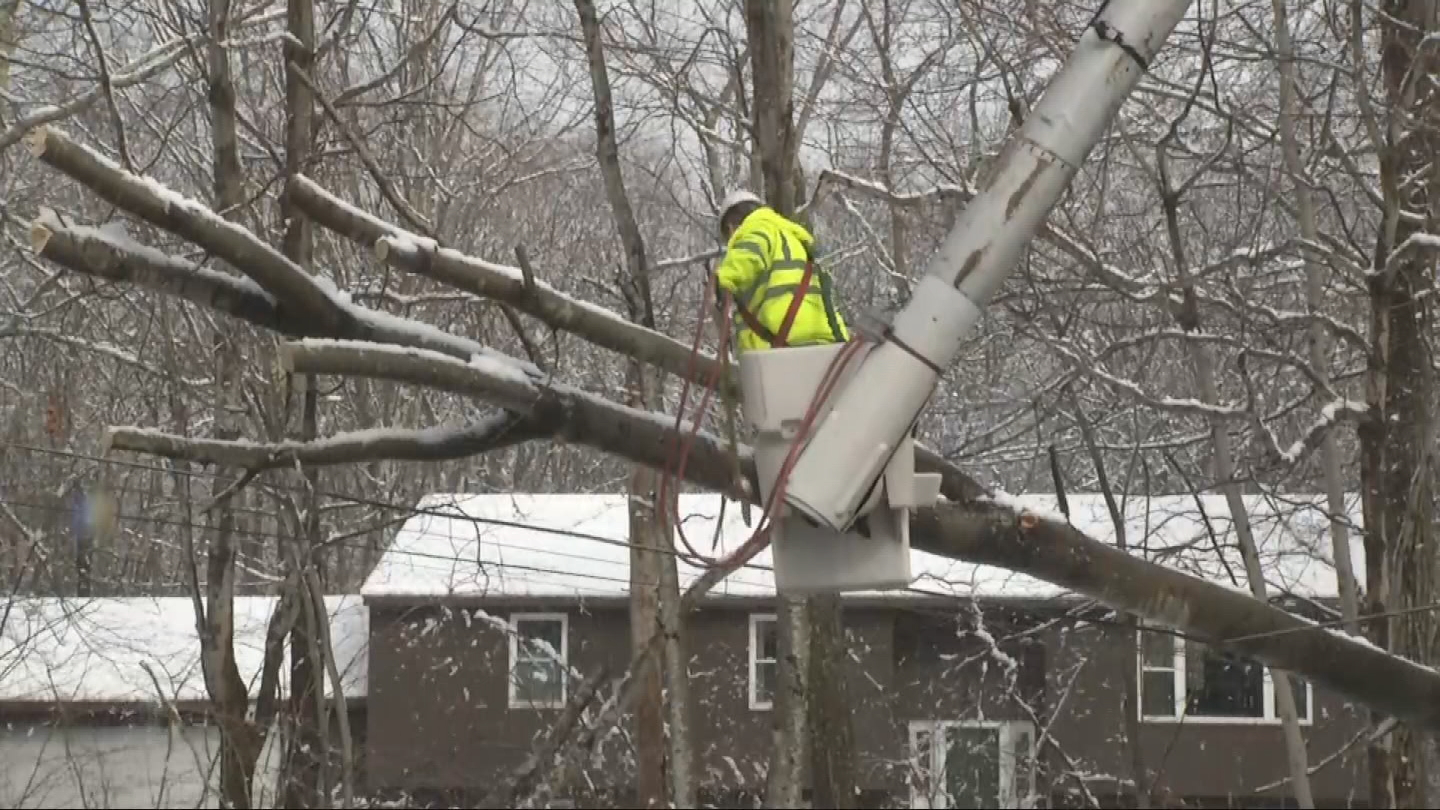 A tree brought down power lines on Bramble Bush Road in Coventry, effectively cutting off a neighborhood, Thursday, March 8, 2018. (WJAR)