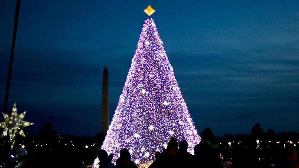 visitors look at the national christmas tree with the washington monument in the background on the ellipse near the white house in washington saturday - Washington Dc Christmas Tree