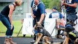 Photos: Springfield Police K-9 Competition at Silke Field