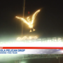 Pensacola's New Year's Eve Pelican Drop in jeopardy