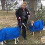 NPD: Snuggie-wearing goats found roaming Nampa streets #TotesMaGoats