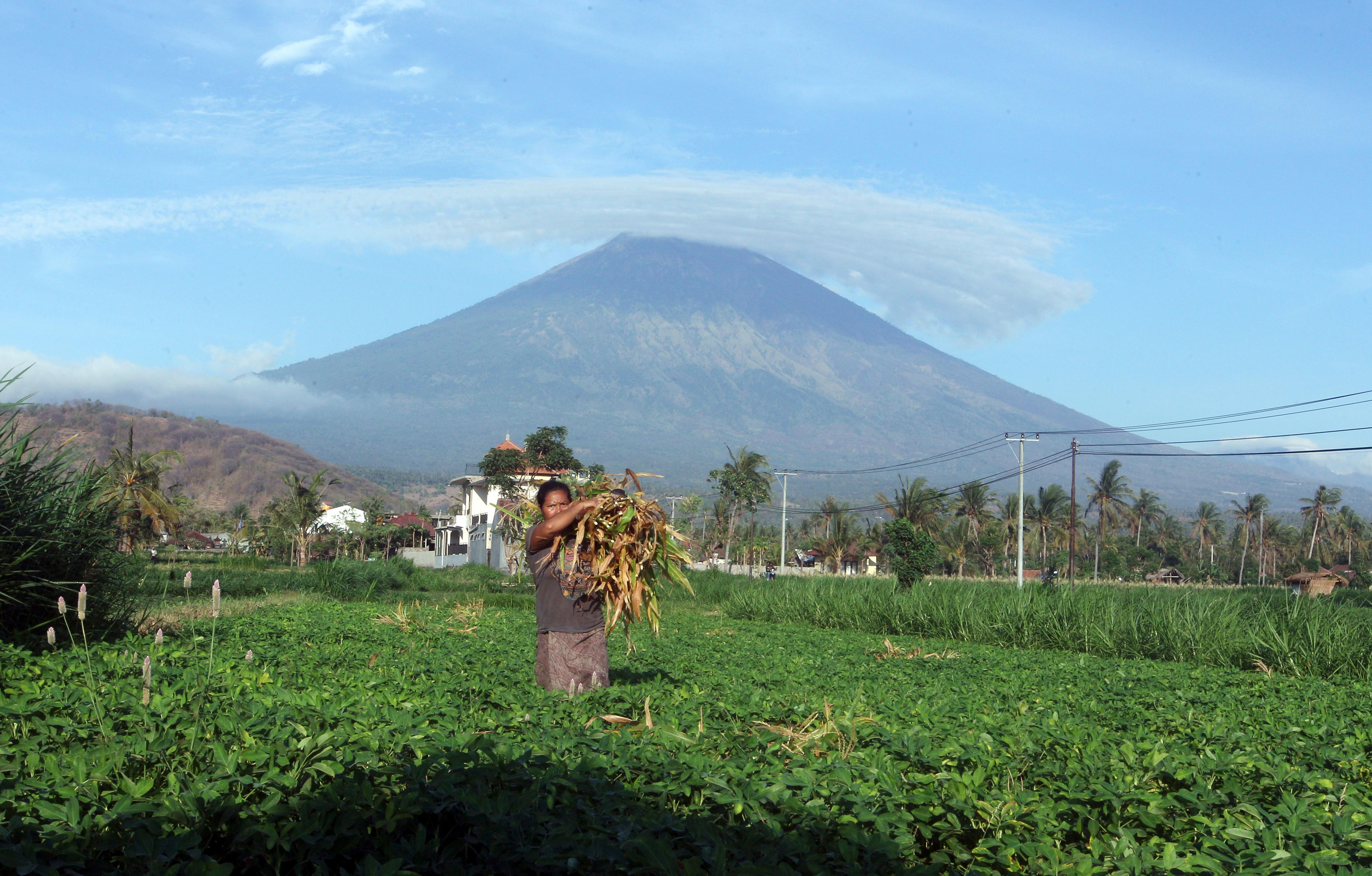 UPDATES CAPTION - A woman works at a field with Mount Agung seen in the background in Amed, Bali, Indonesia, Tuesday, Sept. 26, 2017. More than 57,000 people have fled the surrounds of Mount Agung volcano on the Indonesian tourist island of Bali, fearing an imminent eruption, officials said Tuesday. (AP Photo/Firdia Lisnawati)