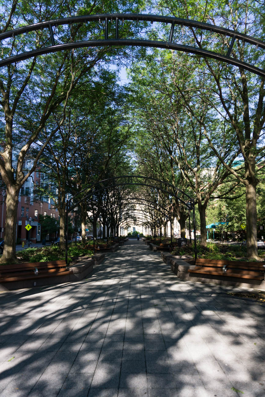 Stretching two blocks between Elm and Vine Streets, Piatt Park sits on land that was donated to the city 200 years ago. This makes it Cincinnati's oldest park. Bronze statues of former U.S. presidents William Henry Harrison and James A. Garfield stand at either end of Piatt Park. Harrison sits in full military dress atop a horse with one raised leg, indicating he was wounded in battle. This is the only equestrian statue in the city. ADDRESS: 100 Garfield Place (45202) / Image: Sarah Vester // Published: 9.8.17
