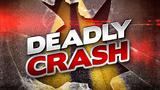 Man dies after crashing car into tree on I-16