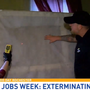 Dirty Jobs Week: Ashley exterminates bed bugs