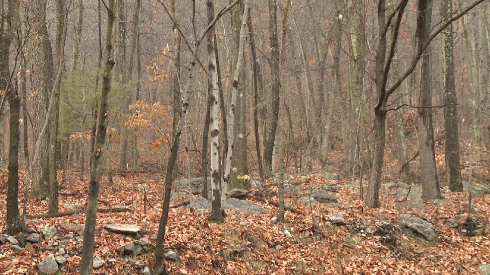 Hunter found dead in schuylkill county wolf