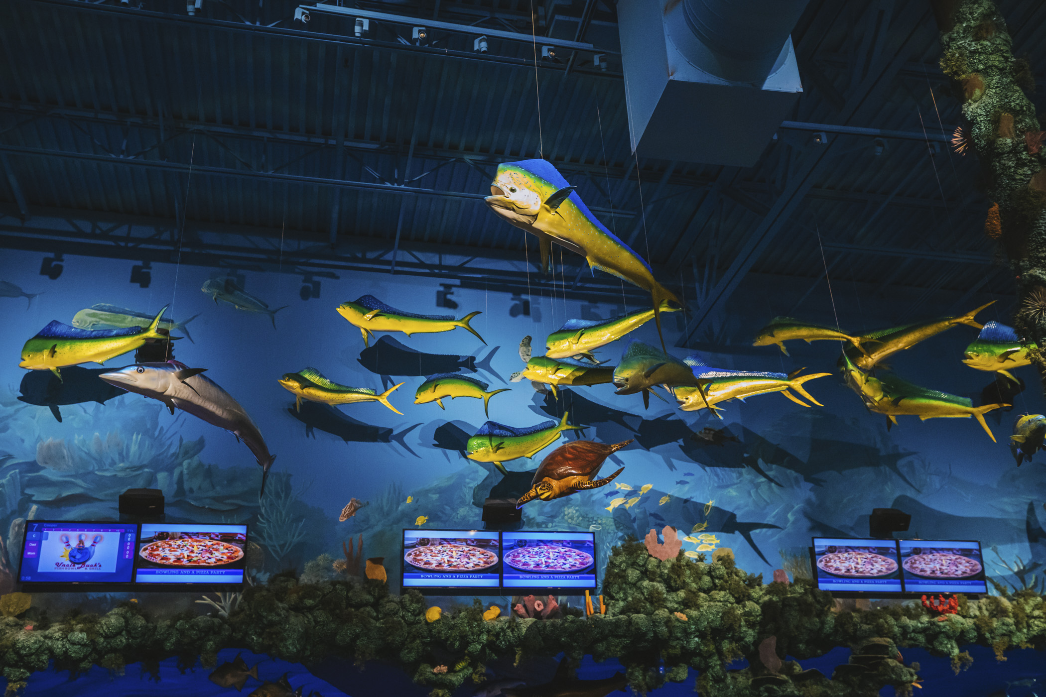 "Talk a-boat a catch! Uncle Buck's Fish Bowl & Grill is an ocean-themed restaurant & bowling alley in Tacoma, WA will truly knock your...galoshes off? With 12 full lanes of bowling, custom bowling balls like octopi, mermaids and camouflage, and wooden ""dock"" bowling lanes all surrounded by hand-painted murals of underwater scenery like sea turtles, sharks, stingrays, and fish hanging from the ceiling. If this sounds like the place for a party - you'd be right! You can rent out the Trophy Room for events. More info, hours and prices{&nbsp;}<a  href=""https://www.unclebucksfishbowlandgrill.com/"" target=""_blank"" title=""https://www.unclebucksfishbowlandgrill.com/"">online</a>. (Image: Sunita Martini / Seattle Refined){&nbsp;}"