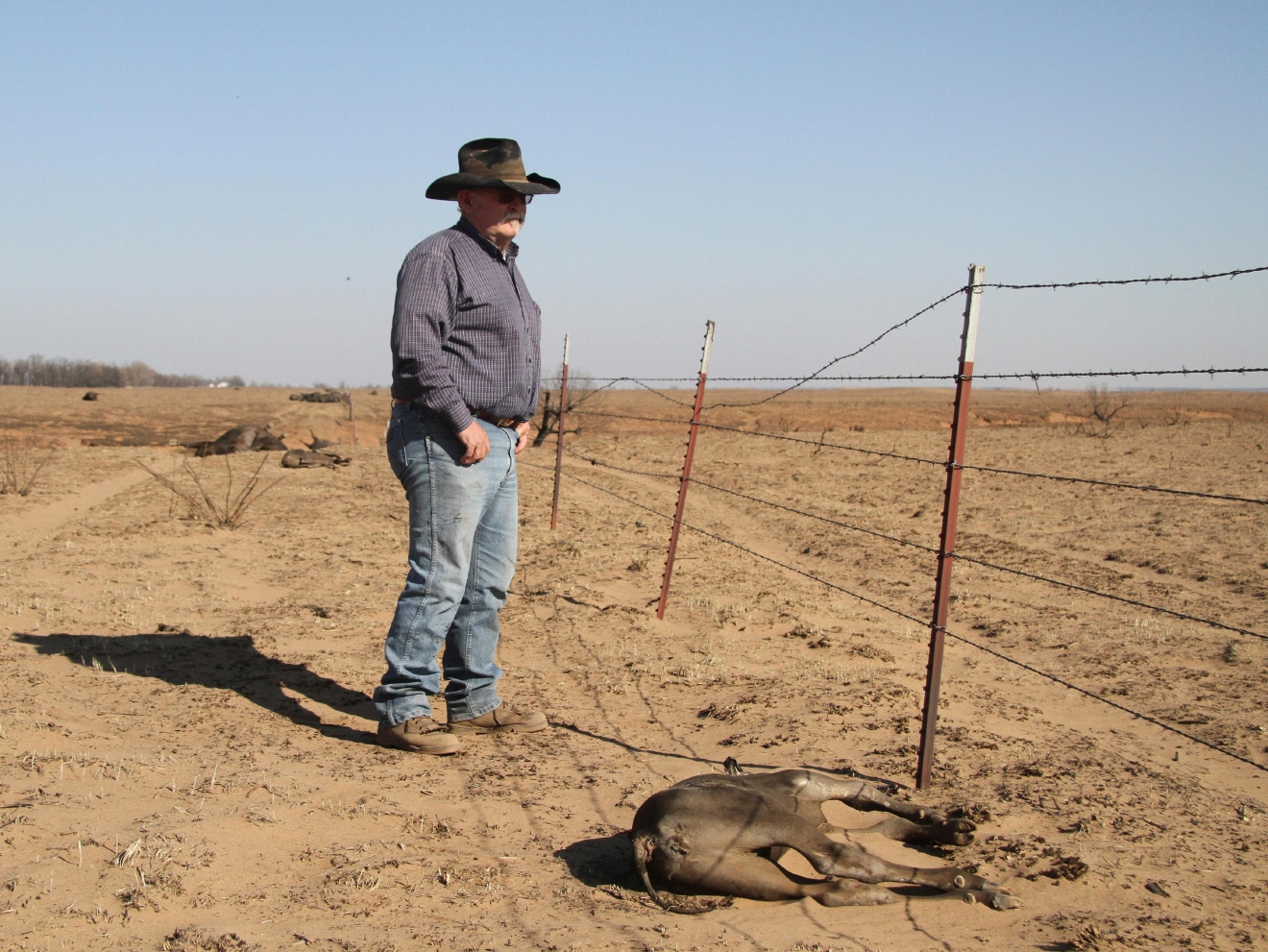 In a March 7, 2017 photo, rancher Greg Gardner, right, surveys some of the damage to his land after the recent wildfire. Gardiner's family has been ranching in Clark County for five generations, having homesteaded in 1885. This week's fires are their ranch's worst natural disaster, killing about 500 cattle. (Mike Pearce/The Wichita Eagle via AP)