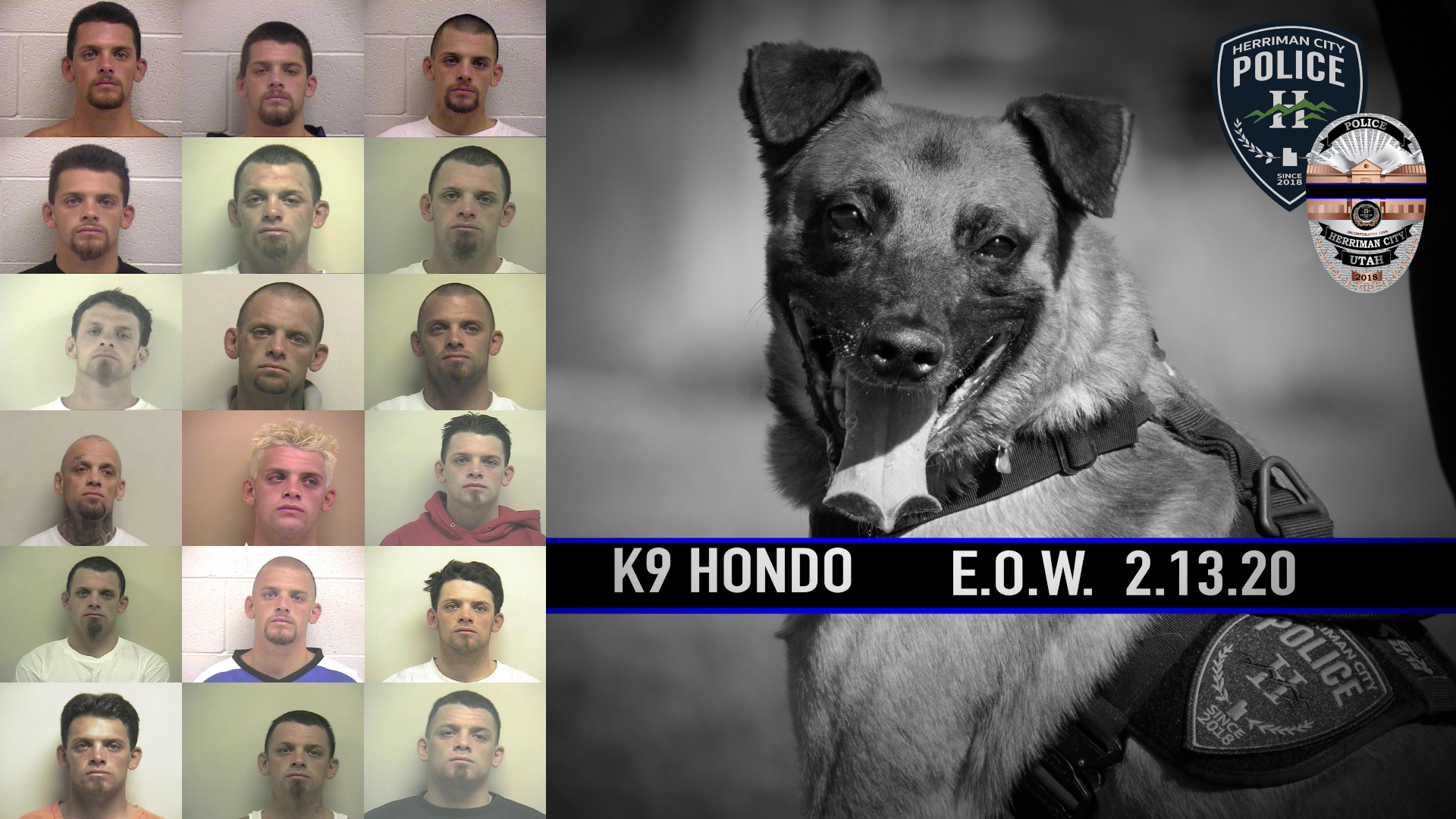 Gallery of booking photos of a fugitive who was killed, along with Herriman PD K9 Hondo, during an apprehension operation on Feb. 13, 2020 in Salt Lake City. (KUTV)<p></p>