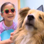 Dogs helping keep kids at ease during dental visits