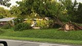 Storm knocks trees onto houses near River Bend