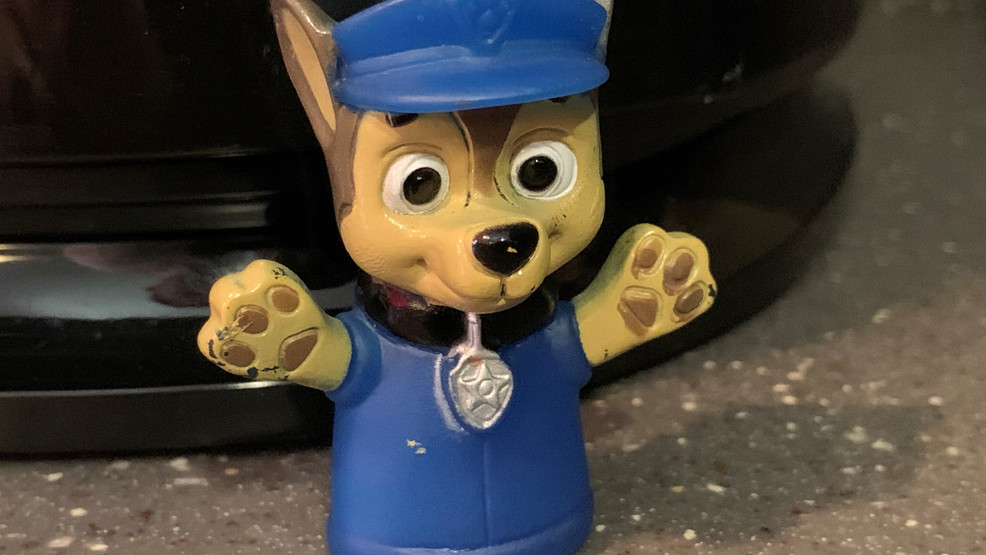 Popular cartoon 'Paw Patrol' character 'Chase' facing pressure from activists