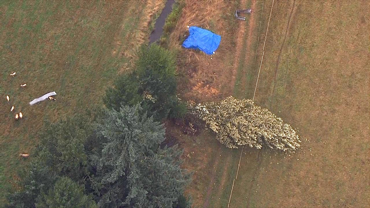 A downed tree and debris litter a field in Lacomb, Oregon Tuesday, Sept. 19, 2017. (Photo: Chopper 2/KATU News)