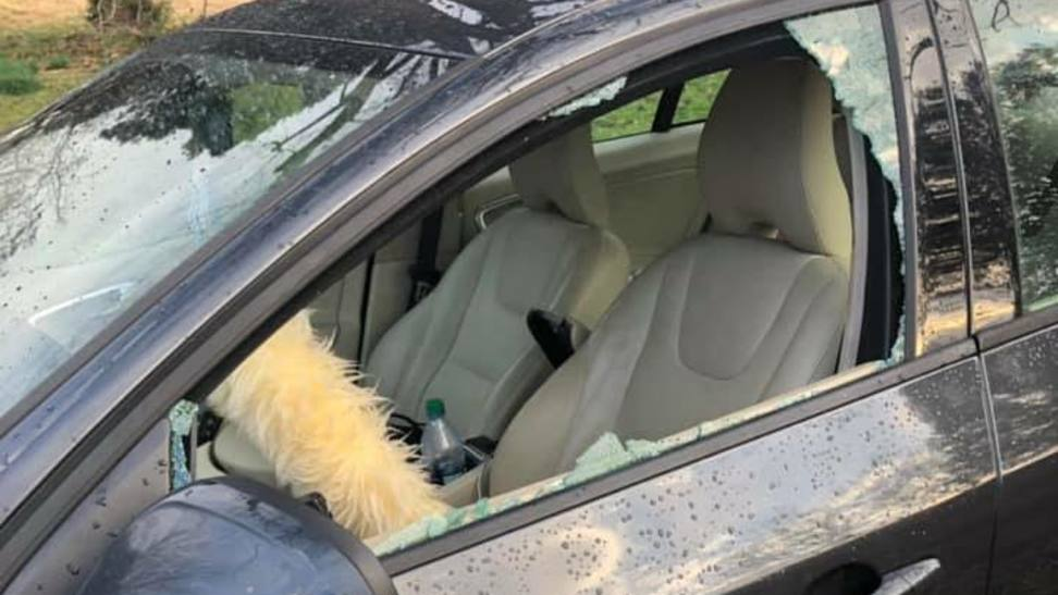 real life grinch stuns community with 12 car break in spree wbma