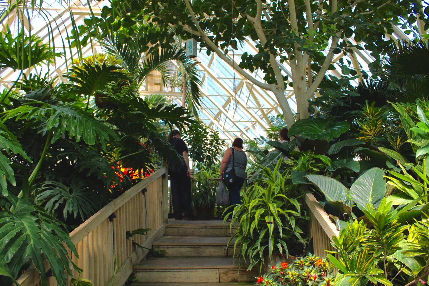 Franklin Park Conservatory and Botanical Gardens has a rich history dating back over 150 years. Originally, it was the site of the 1874 Ohio State Fair, and it's been open to the public as Franklin Park Conservatory since 1895. The Conservatory features several seasonal exhibitions, in addition to year-round displays. There's also a permanent collection of artist Dale Chihuly's glass artwork featured. It is 110 miles north of Cincinnati. ADDRESS: 1777 E Broad St., Columbus, OH (43203) / Image: Rose Brewington // Published: 8.20.17