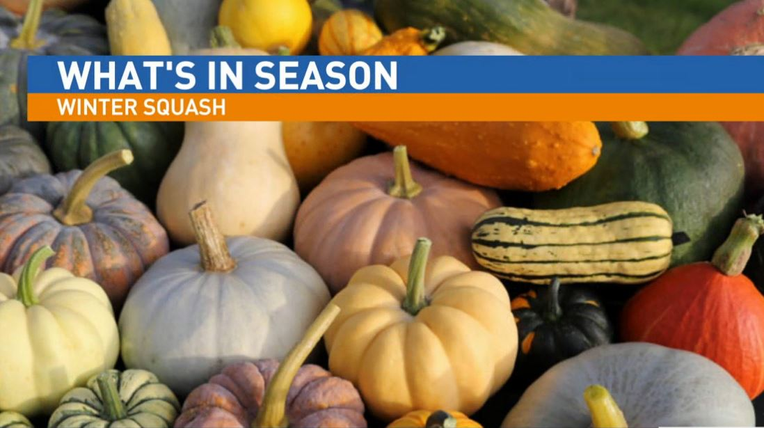 Ryan Jacobsen with the Fresno County Farm Bureau visited Great Day to talk about What's In Season: Winter Squash.