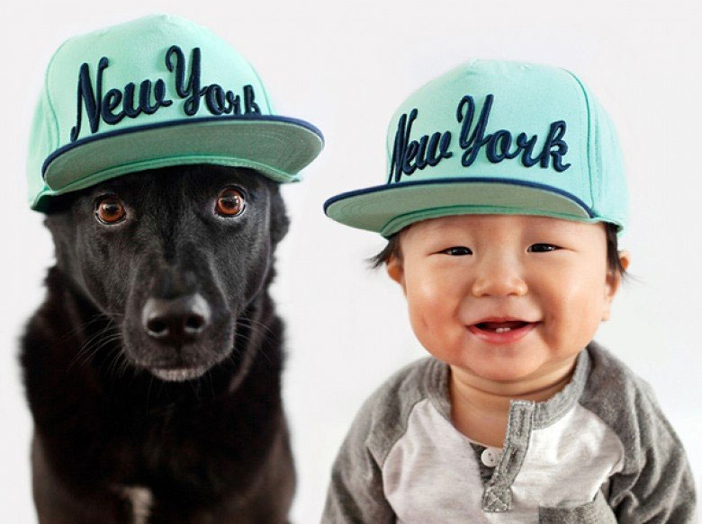 When you look at a picture of Zoey, a rescue dog from Taiwan, and Jasper, a 10-month-old Chinese-Korean baby, it's hard to imagine they were ever anything but best friends. But once, they weren't.