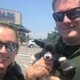 Puppy rescued from hot car in Pensacola