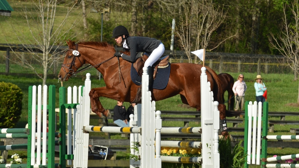 Horse Loving Volunteers Needed For April Event In Tryon Wlos