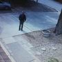 KPD looking for man seen prowling on home surveillance video