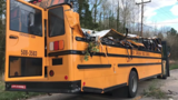 5 students recovering after tree falls on Greenville Co. school bus