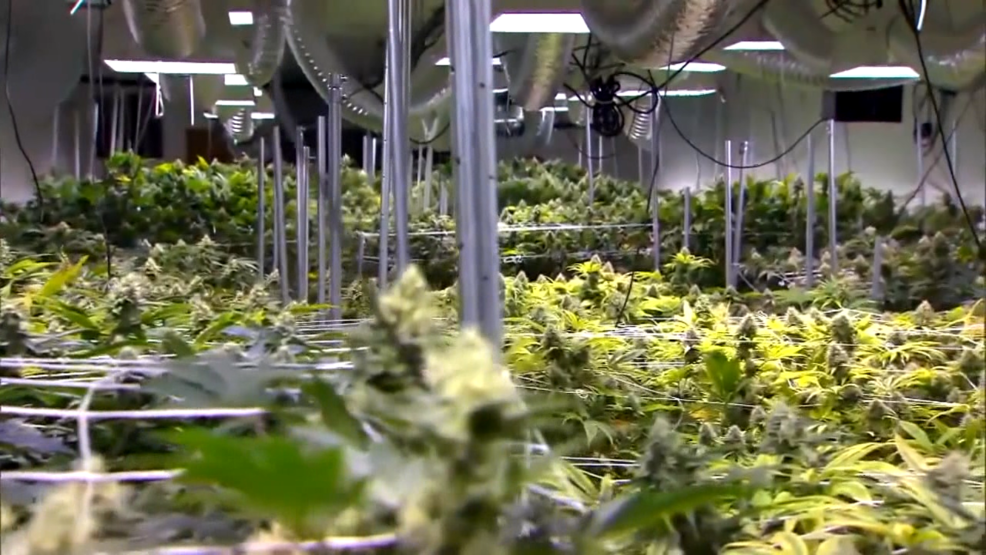 Ohio announces medical marijuana dispensaries   WKRC