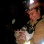 Family dog recovered safely after lighting strike causes SE Austin house fire