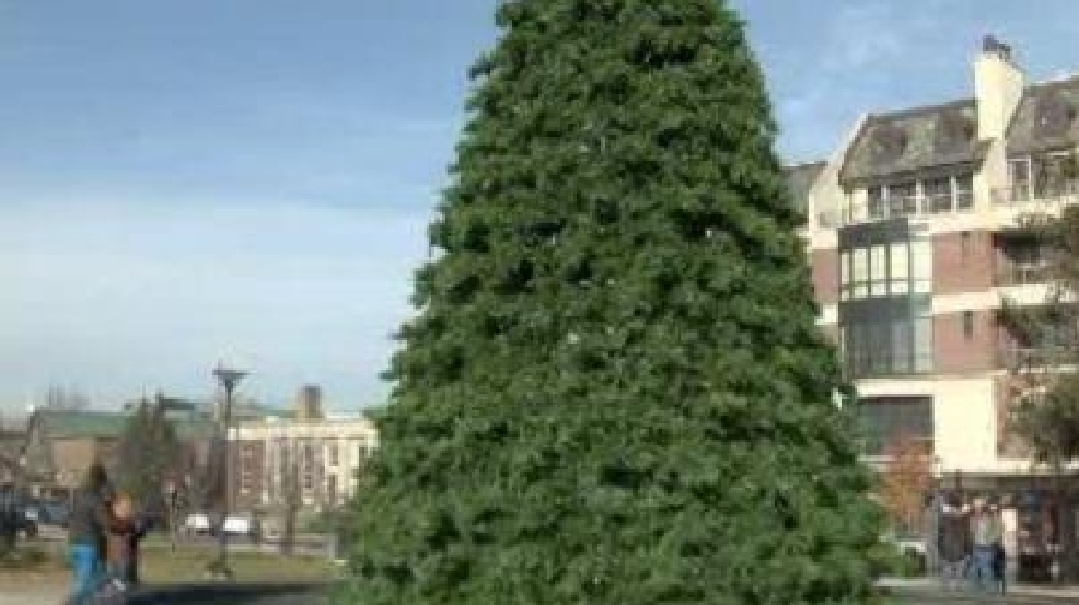 fake christmas tree stirs up holiday controversy