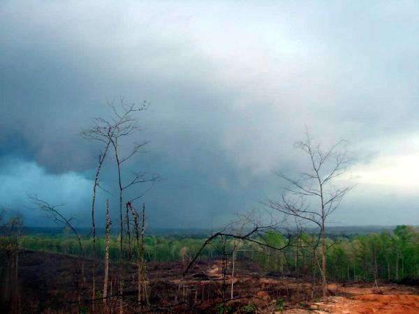 Pickens County tornado moving through the Pine Grove and Macedonia communities on Thursday, April 11, 2013.