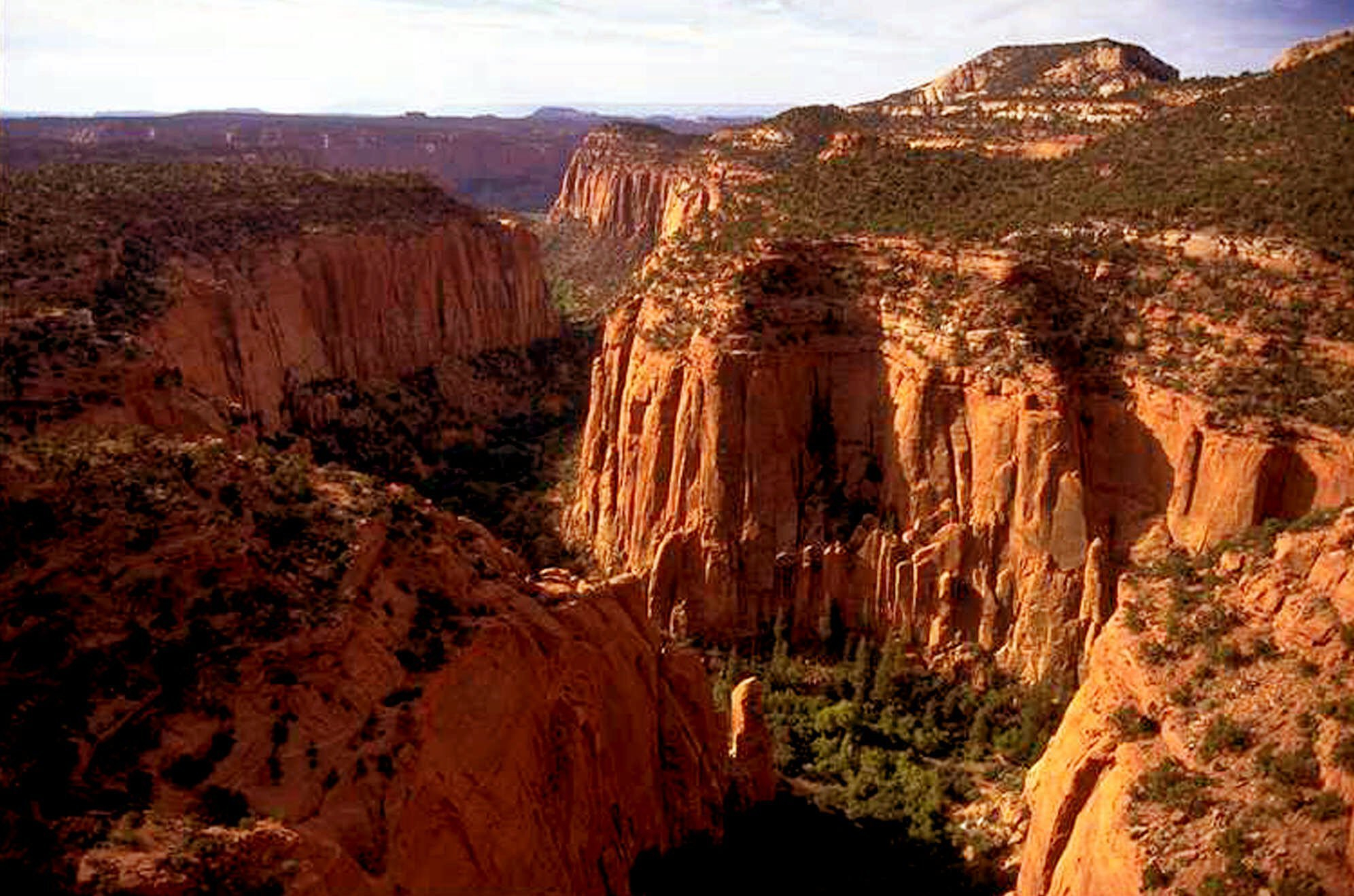 In this undated file photo, the Upper Gulch section of the Escalante Canyons within Utah's Grand Staircase-Escalante National Monument features sheer sandstone walls, broken occasionally by tributary canyons. Utah has long stood out for going far beyond other Western states in trying to get back control of its federally protected lands. When President Donald Trump on Monday, Dec. 4, 2017, announces he's going to shrink two national monuments in the state, his warm welcome will stand out in a region that is normally protective of its parks and monuments. (AP Photo/Douglas C. Pizac, File)<p></p>