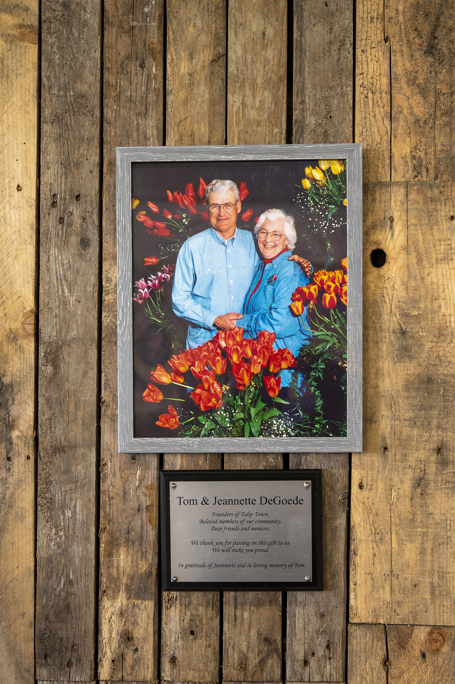 "According to Tulip Town's website, Anthony ""Tom"" DeGoede immigrated from Holland to Canada in 1956 before moving to Washington's Mount Vernon in 1957. He managed the Neal Noorlag Bulb Farm until 1983 and Tulip Town was founded in 1984. (Rachael Jones / Seattle Refined)"