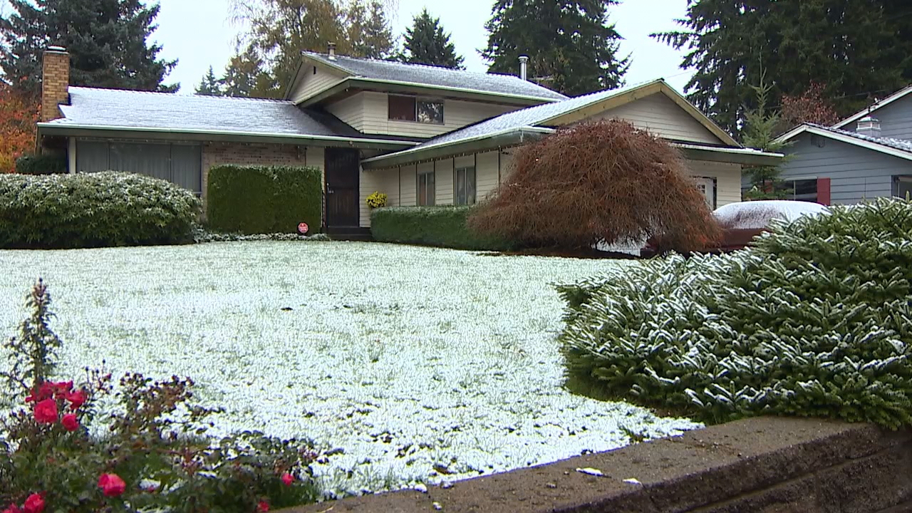 A bit of snow falls in the Seattle area on Nov. 5, 2017 (Photo: KOMO News)<p></p>