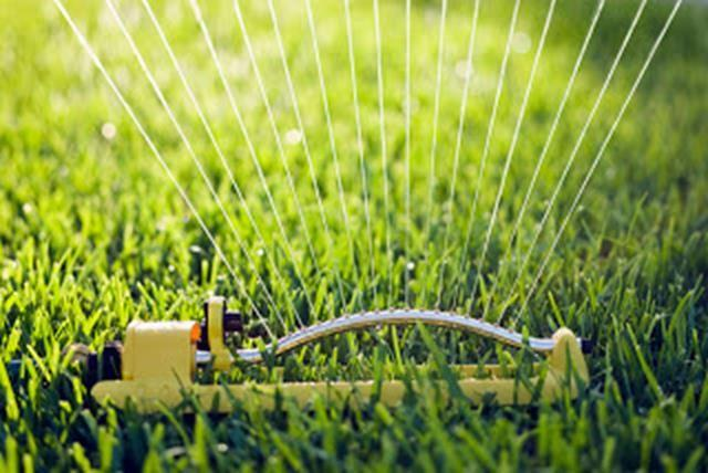 Hook up the sprinkler and run through, just like when you were a kid. Just make sure you're doing it on the even or odd day!