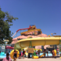 Wet N Wild and City officials: No amoeba at water park