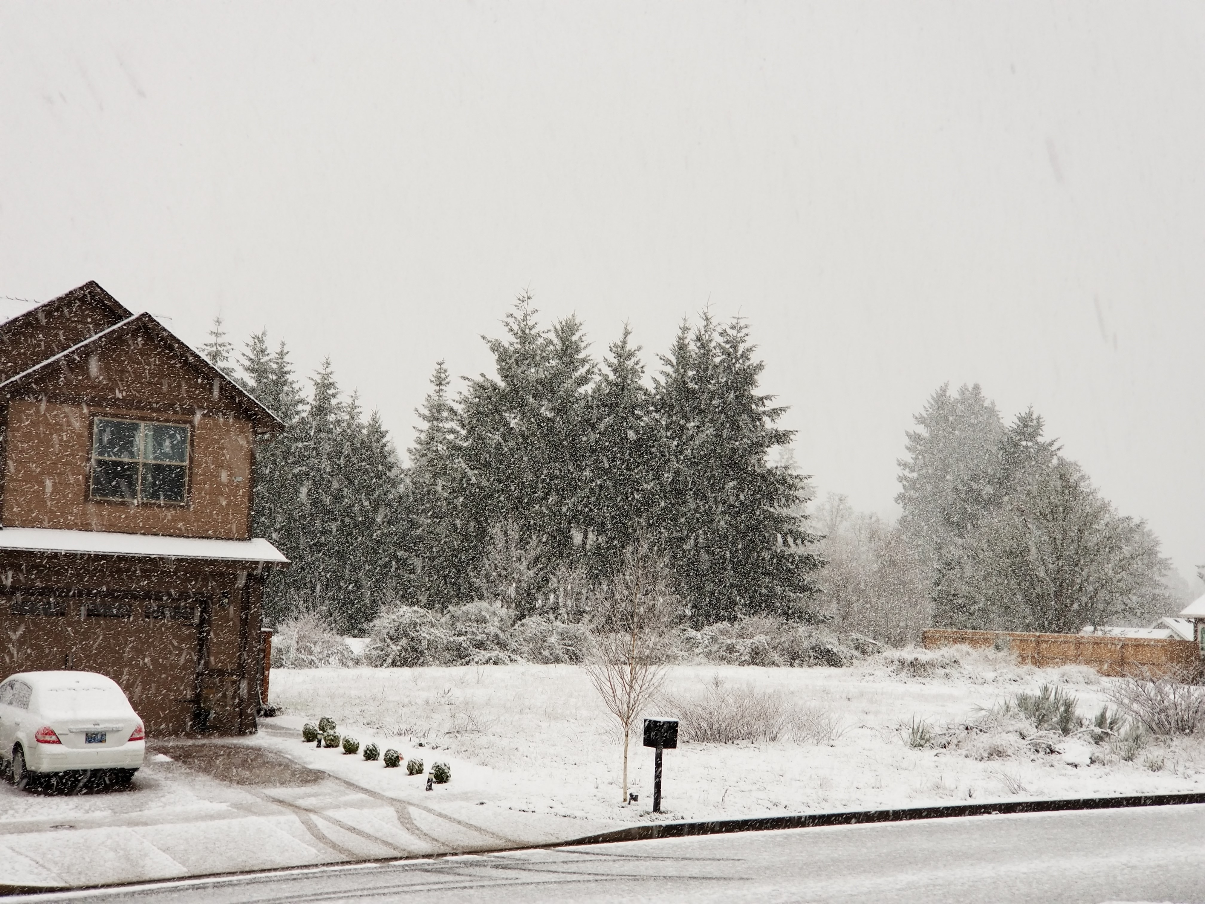 Have some snow photos? Send them to us on burst.com/katu and we will air them on KATU News!