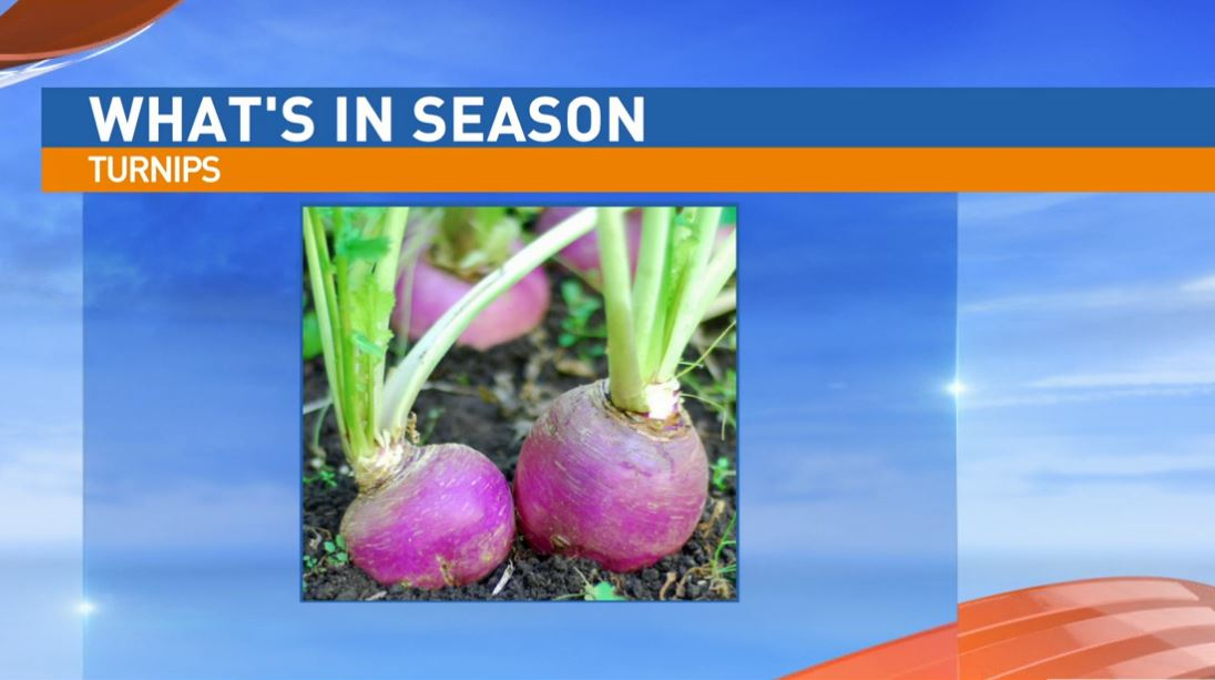 Ryan Jacobsen with the Fresno County Farm Bureau visited Great Day to talk about What's In Season: Turnips.