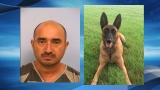Austin Police narcotics K9 locates $90K in cocaine during traffic stop