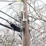 Belmont County recovering after earlier power outages