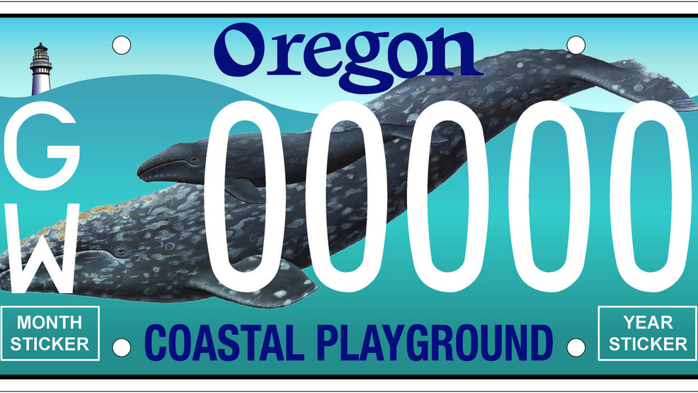 Oregon whale license plate will be available to purchase in 2019 | KCBY