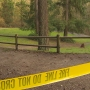 Teenage hiker killed by falling tree at Snohomish County park