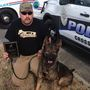 Tennessee police department's K9 stabbed to death on the job