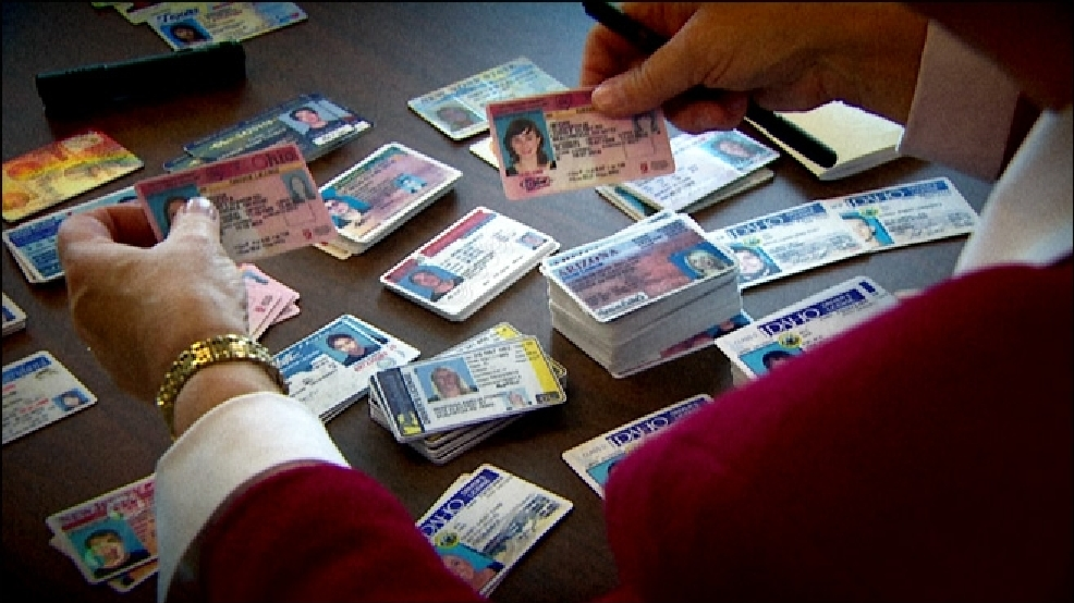 Near-perfect' fake IDs pose law enforcement challenge | KOMO