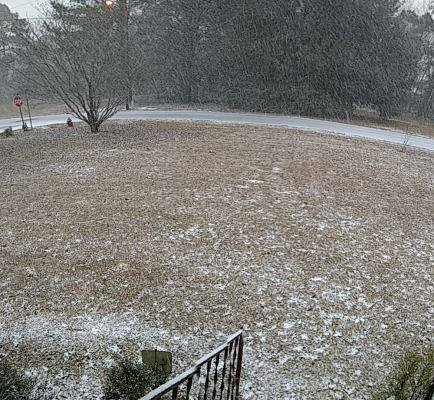 Snow in Hartsville (Ron Acord)<p></p>