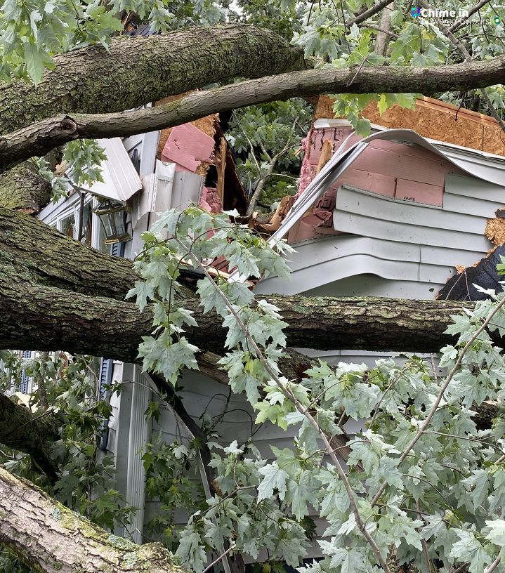 A downed tree slices through the corner of a home in Coldwater, Michigan, following the June 10-11, 2020, storms. (WWMT/Chime In, Ingrid)