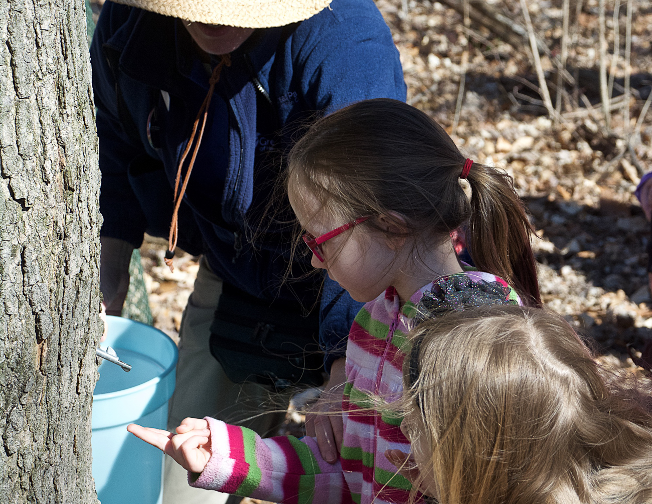 On Saturday (Feb. 24) and Sunday (Feb. 25), Maple Sugar Days will be held at Farbach-Werner Nature Preserve at the Ellenwood Nature Barn. There, you can celebrate the impending coming of spring by making maple syrup. The event includes tests, crafts, demonstrations, and hikes. / Image courtesy of Great Parks of Hamilton County // Published: 2.17.18